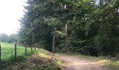 Trail Other activity Bouillon - Rochehaut Les échelles - Photo 1