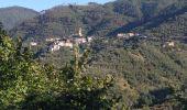 Randonnée Marche Levanto - levante-vernassa - Photo 12
