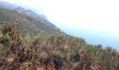 Randonnée Marche Levanto - levante-vernassa - Photo 8
