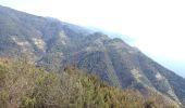 Trail Walk Levanto - levante-vernassa - Photo 7