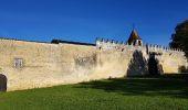 Randonnée Marche SAINT-BRICE - entre vignes et Charente  - Photo 11