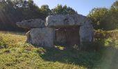 Randonnée Marche SAINT-BRICE - entre vignes et Charente  - Photo 8