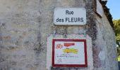 Randonnée Marche SAINT-BRICE - entre vignes et Charente  - Photo 6