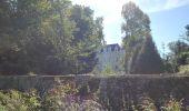 Randonnée Marche SAINT-BRICE - entre vignes et Charente  - Photo 4