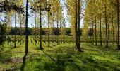 Randonnée Marche SAINT-BRICE - entre vignes et Charente  - Photo 2