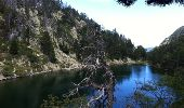 Trail Walk LES ANGLES - Le tour du Llaret 2 - Photo 15