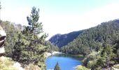 Trail Walk LES ANGLES - Le tour du Llaret 2 - Photo 13