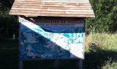 Trail Walk LES ANGLES - Le tour du Llaret 2 - Photo 2