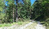 Trail Walk GUILLAUMES - 28-08-2011-balade au départ du ''pont des roberts'' - Photo 2