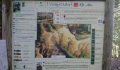 Randonnée Marche SUC-ET-SENTENAC - SVG 171001 - Photo 18