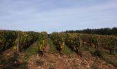 Randonnée Marche NANTOUX - petite balade très facile sur les hauteur de Nantoux - Photo 3
