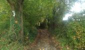 Randonnée Marche Aubel - Val Dieu Aubel - Photo 2