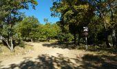 Randonnée Marche CALLAS - Callas rando réelle 111017 - Photo 3