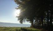 Randonnée Vélo Ménières - forêt de Valbroye  - Photo 3