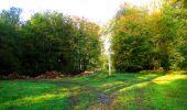 Trail Walk PIERREFONDS - en forêt de Compiègne_7_Mont St-Pierre_Mont Arcy_étangs de St-Pierre - Photo 14