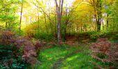 Trail Walk PIERREFONDS - en forêt de Compiègne_7_Mont St-Pierre_Mont Arcy_étangs de St-Pierre - Photo 118