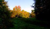 Trail Walk PIERREFONDS - en forêt de Compiègne_7_Mont St-Pierre_Mont Arcy_étangs de St-Pierre - Photo 54