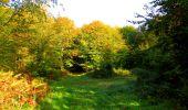 Trail Walk PIERREFONDS - en forêt de Compiègne_7_Mont St-Pierre_Mont Arcy_étangs de St-Pierre - Photo 33