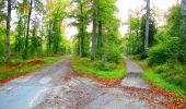 Trail Walk PIERREFONDS - en forêt de Compiègne_7_Mont St-Pierre_Mont Arcy_étangs de St-Pierre - Photo 147
