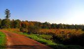 Trail Walk PIERREFONDS - en forêt de Compiègne_7_Mont St-Pierre_Mont Arcy_étangs de St-Pierre - Photo 66