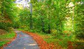 Trail Walk PIERREFONDS - en forêt de Compiègne_7_Mont St-Pierre_Mont Arcy_étangs de St-Pierre - Photo 141