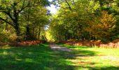 Trail Walk PIERREFONDS - en forêt de Compiègne_7_Mont St-Pierre_Mont Arcy_étangs de St-Pierre - Photo 112