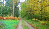 Trail Walk PIERREFONDS - en forêt de Compiègne_7_Mont St-Pierre_Mont Arcy_étangs de St-Pierre - Photo 24