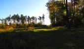 Trail Walk PIERREFONDS - en forêt de Compiègne_7_Mont St-Pierre_Mont Arcy_étangs de St-Pierre - Photo 125