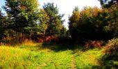 Trail Walk PIERREFONDS - en forêt de Compiègne_7_Mont St-Pierre_Mont Arcy_étangs de St-Pierre - Photo 128