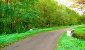 Trail Walk PIERREFONDS - en forêt de Compiègne_7_Mont St-Pierre_Mont Arcy_étangs de St-Pierre - Photo 65