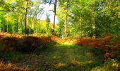 Trail Walk PIERREFONDS - en forêt de Compiègne_7_Mont St-Pierre_Mont Arcy_étangs de St-Pierre - Photo 71