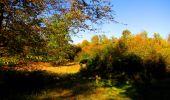 Trail Walk PIERREFONDS - en forêt de Compiègne_7_Mont St-Pierre_Mont Arcy_étangs de St-Pierre - Photo 122