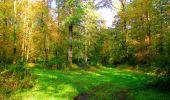 Trail Walk PIERREFONDS - en forêt de Compiègne_7_Mont St-Pierre_Mont Arcy_étangs de St-Pierre - Photo 36