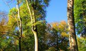 Trail Walk PIERREFONDS - en forêt de Compiègne_7_Mont St-Pierre_Mont Arcy_étangs de St-Pierre - Photo 108
