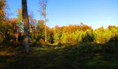 Trail Walk PIERREFONDS - en forêt de Compiègne_7_Mont St-Pierre_Mont Arcy_étangs de St-Pierre - Photo 127