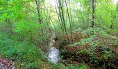 Trail Walk PIERREFONDS - en forêt de Compiègne_7_Mont St-Pierre_Mont Arcy_étangs de St-Pierre - Photo 5