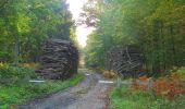 Trail Walk PIERREFONDS - en forêt de Compiègne_7_Mont St-Pierre_Mont Arcy_étangs de St-Pierre - Photo 29