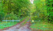 Trail Walk PIERREFONDS - en forêt de Compiègne_7_Mont St-Pierre_Mont Arcy_étangs de St-Pierre - Photo 28