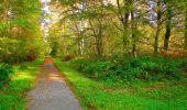 Trail Walk PIERREFONDS - en forêt de Compiègne_7_Mont St-Pierre_Mont Arcy_étangs de St-Pierre - Photo 45