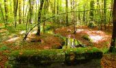 Trail Walk PIERREFONDS - en forêt de Compiègne_7_Mont St-Pierre_Mont Arcy_étangs de St-Pierre - Photo 79