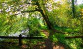 Trail Walk PIERREFONDS - en forêt de Compiègne_7_Mont St-Pierre_Mont Arcy_étangs de St-Pierre - Photo 82