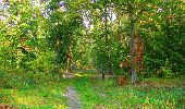 Trail Walk PIERREFONDS - en forêt de Compiègne_7_Mont St-Pierre_Mont Arcy_étangs de St-Pierre - Photo 30