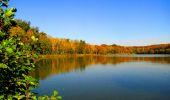 Trail Walk PIERREFONDS - en forêt de Compiègne_7_Mont St-Pierre_Mont Arcy_étangs de St-Pierre - Photo 87