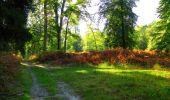 Trail Walk PIERREFONDS - en forêt de Compiègne_7_Mont St-Pierre_Mont Arcy_étangs de St-Pierre - Photo 72