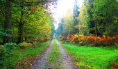 Trail Walk PIERREFONDS - en forêt de Compiègne_7_Mont St-Pierre_Mont Arcy_étangs de St-Pierre - Photo 26