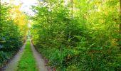 Trail Walk PIERREFONDS - en forêt de Compiègne_7_Mont St-Pierre_Mont Arcy_étangs de St-Pierre - Photo 19