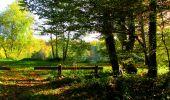 Trail Walk PIERREFONDS - en forêt de Compiègne_7_Mont St-Pierre_Mont Arcy_étangs de St-Pierre - Photo 81