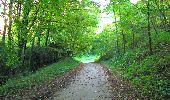 Trail Walk PIERREFONDS - en forêt de Compiègne_7_Mont St-Pierre_Mont Arcy_étangs de St-Pierre - Photo 2