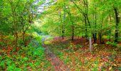 Trail Walk PIERREFONDS - en forêt de Compiègne_7_Mont St-Pierre_Mont Arcy_étangs de St-Pierre - Photo 142