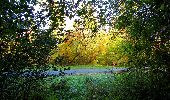 Trail Walk PIERREFONDS - en forêt de Compiègne_7_Mont St-Pierre_Mont Arcy_étangs de St-Pierre - Photo 38